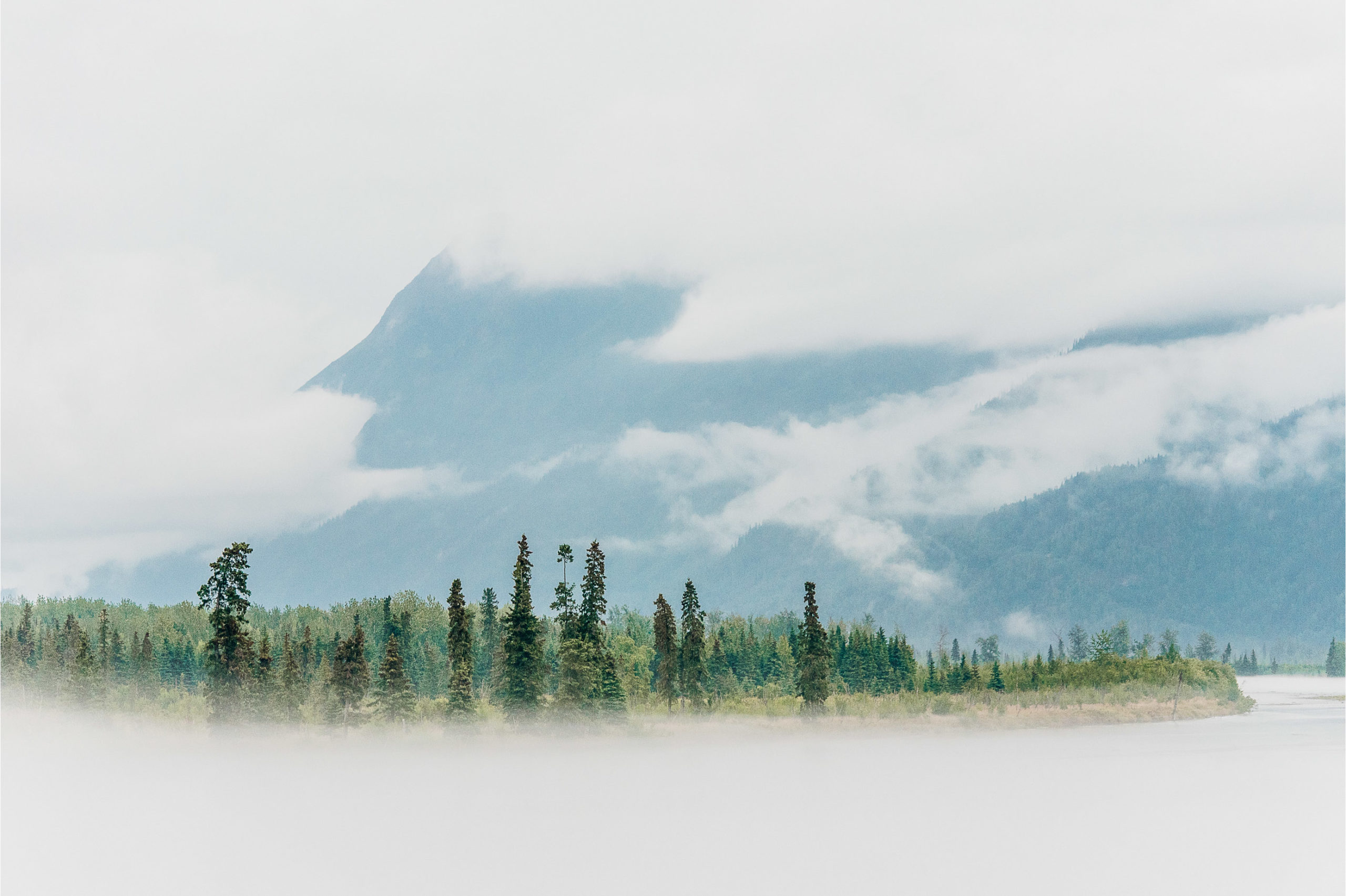 Commercial-Landscapes-16