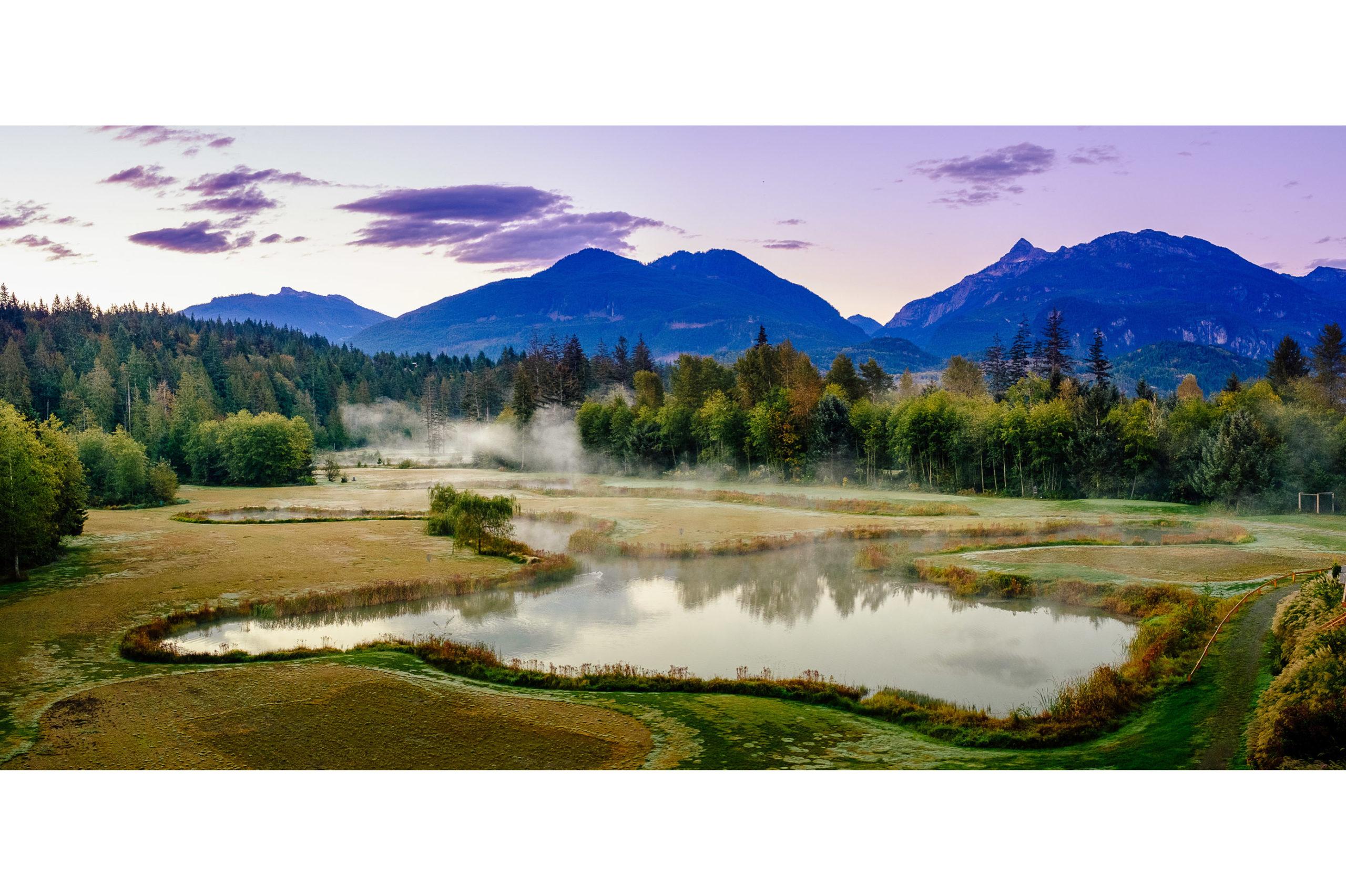 Commercial-Landscapes-46